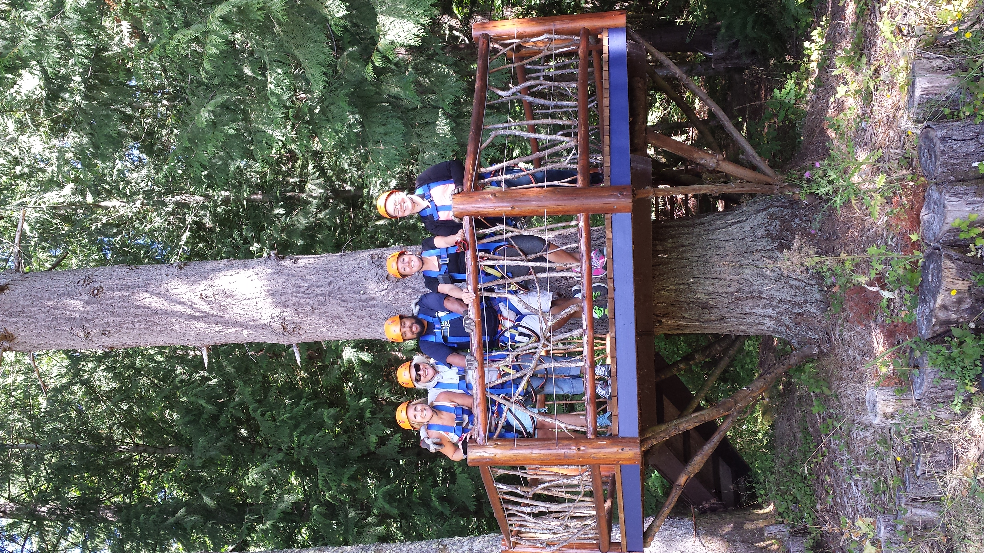 Tiffany Ostreim_Tree House Zip Line
