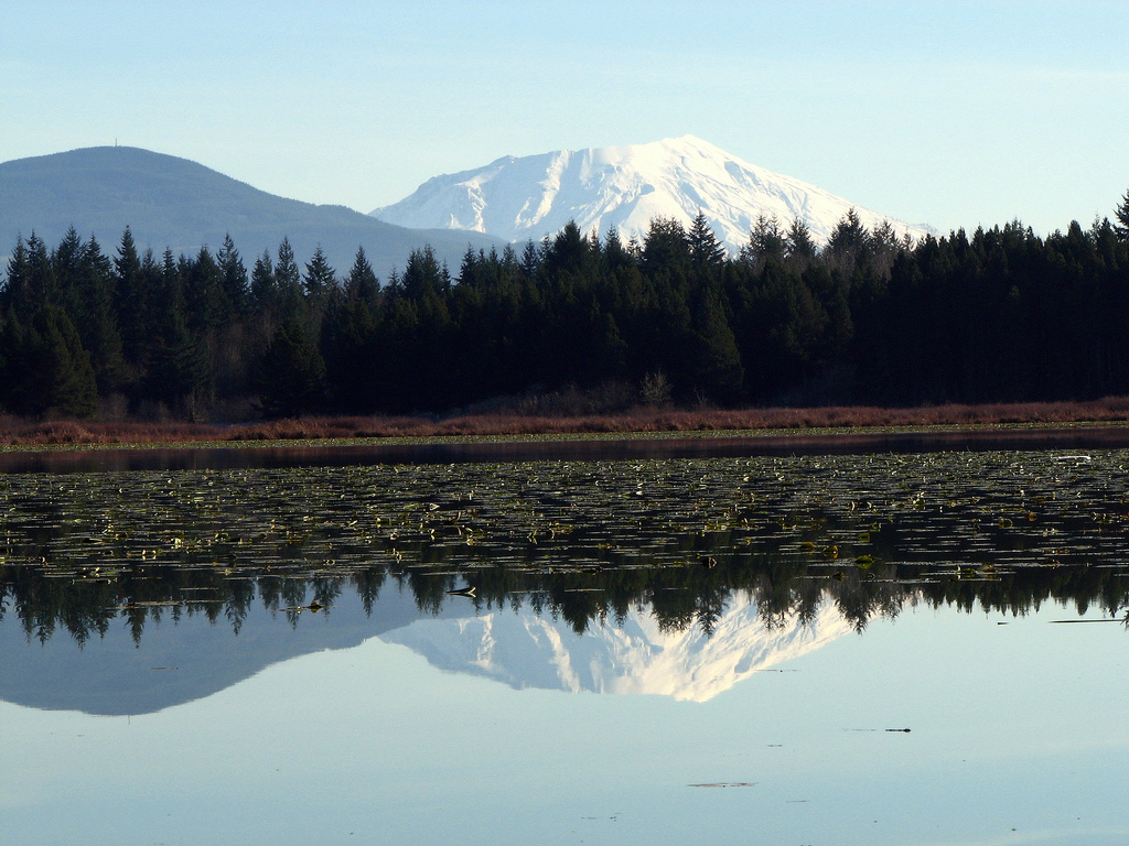 Cowlitz county wa official website critical areas for Silver lake washington fishing