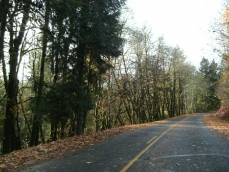 2014 Project Pic-Kalama River Road.jpg